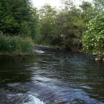 The Touchet River from The Gite