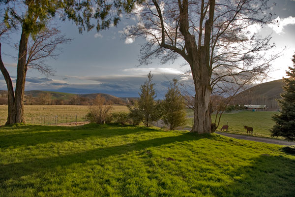 Farm Landscape in Spring Photo by Steve Scardina.
