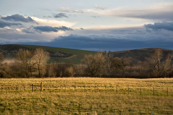 Monteillet Farm Landscape Photo by Steve Scardina