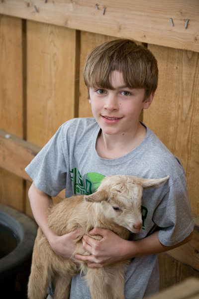 Child holding Kid Goat - Farm Stay Photo by Steve Scardina.