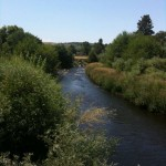 Photo of The Touchet River in Summer