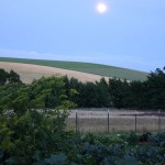 photo of full moon rising over hills—2011 Outstanding in the Field Dinner—photo by The Farm Chicks
