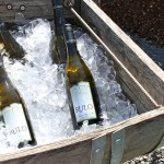 photo of bottles of wine chilling on ice—2011 Outstanding in the Field Dinner—photo by The Farm Chicks