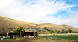 photo: Monteillet farm, by Beth Collins | Budget Travel May 2011