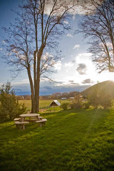 Picnic Table with View of the Monteillet Farm Photo by Steve Scardina.