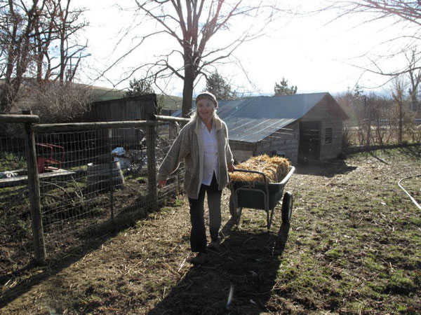 Photo of Joan Monteillet Pulling a Wagon with a Bale of Hay in January Sun