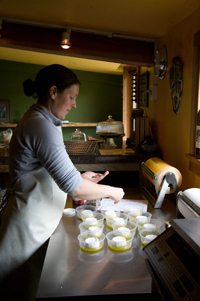 Preparing Provencal, a Soft Cheese with Rosemary. Photo by Steve Scardina