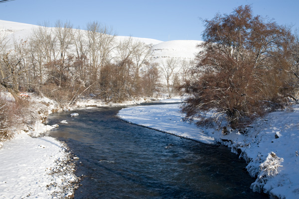 The Touchet River with Snowy Banks Photo by Steve Scardina.