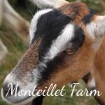 Photo Gallery: Monteillet Farm