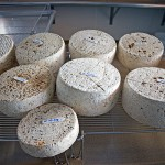 Photo of Tomme - Traditional French Hard Cheese - from Monteillet Fromagerie