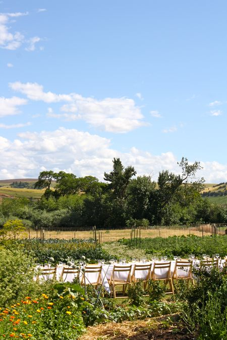 photo of table set for dinner in Nourish Gardens—2011 Outstanding in the Field Dinner—photo by The Farm Chicks